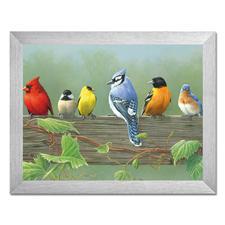 "Malen nach Zahlen ""Vögel"""
