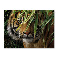"""Malen nach Zahlen """"Tiger"""", ohne Rahmen Malen nach Zahlen."""