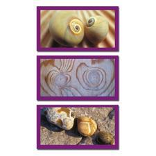 Naturimpressionen in Sand