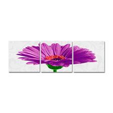 """Malen nach Zahlen """"Triptychon Gerbera jamesonii violett"""""""