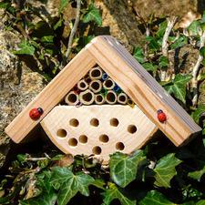 """Minibugs """"Käferhaus"""" Insektenhotels - gemütliches Heim für kleine, nützliche Gartenhelfer."""