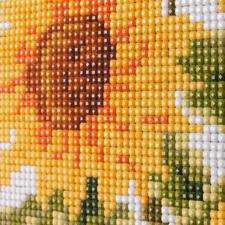 Detailansicht Sonnenblumen