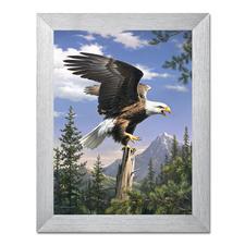 """Malen nach Zahlen """"Adler"""""""