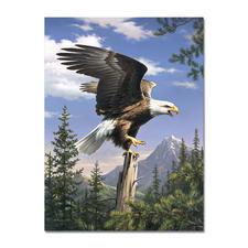 """Malen nach Zahlen """"Adler"""", ohne Rahmen Malen nach Zahlen """"Adler"""""""