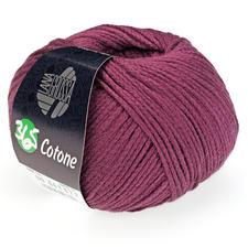 29 Violett