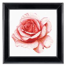 """Kreuzstichbild """"Rosenblüte"""" Romantische Rosen zum Sticken."""
