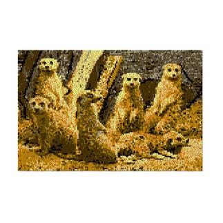 Wandbehang - Erdmännchen Naturalistische Tiermotive