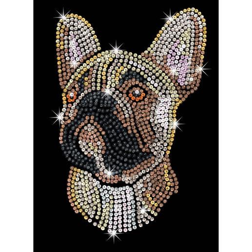 Paillettenbild für Erwachsene - Franz. Bulldogge