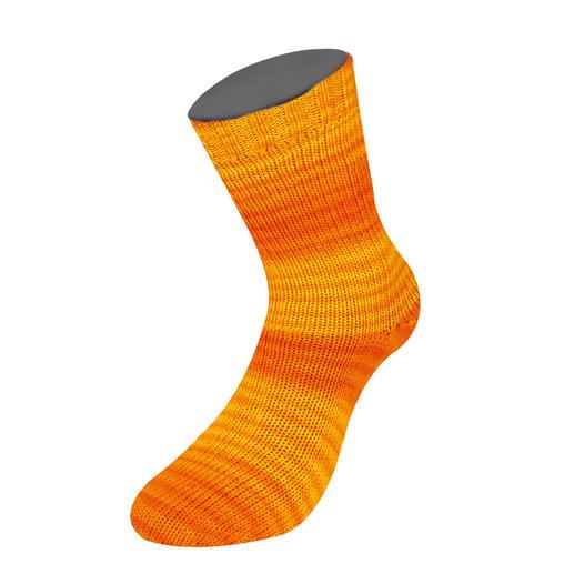 4105 Orange