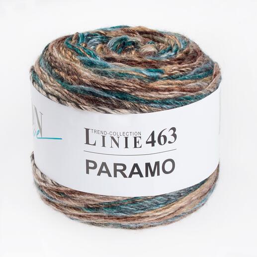 Linie 463 Paramo von ONline