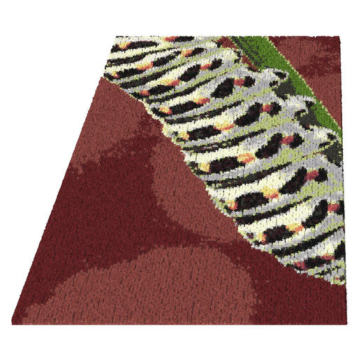 Teppich - Larve