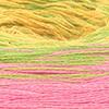 Lachs/Kiwi/Gelb