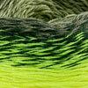 Gelb-Grün